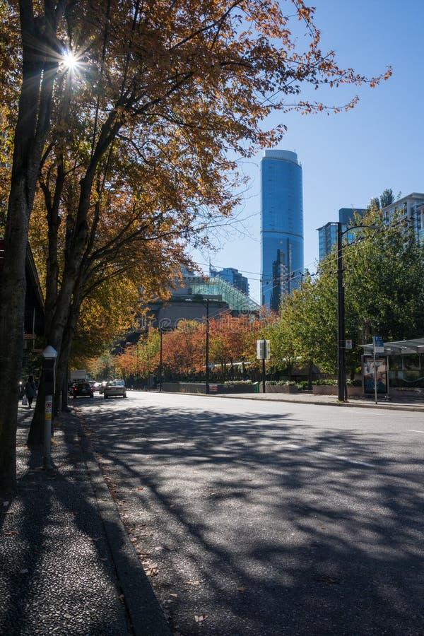 Maximum av solen till och med träd för guling- och ornagenedgånglövverk i centret av Vancouver royaltyfria foton