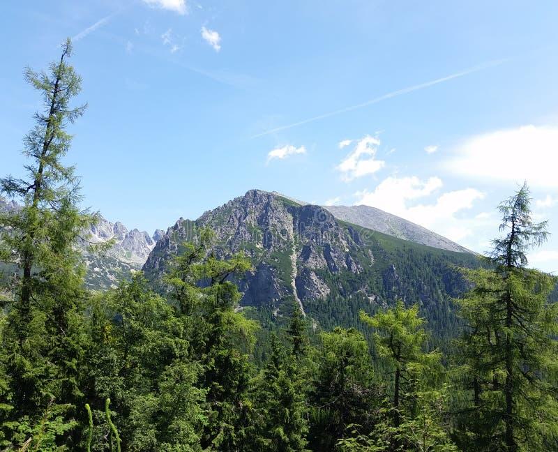 Maximum i höga Tatras arkivfoto