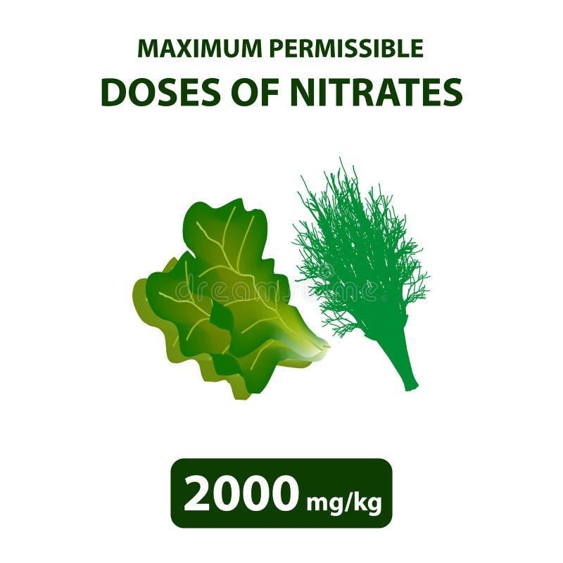 Maximumet - tillåten dos av nitrater i dill, sallad Nitrater i grönsaker och frukter Infographics också vektor för coreldrawillus vektor illustrationer