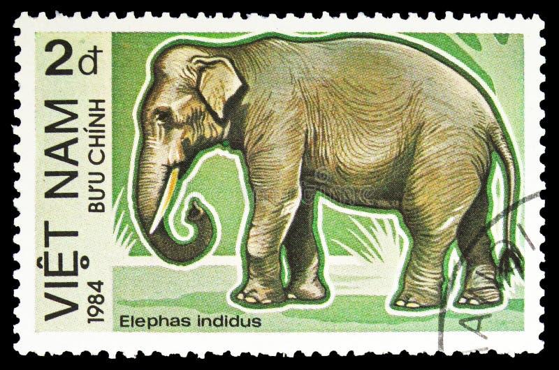 Maximus del Elephas del elefante asiático, serie en peligro de los animales, circa 1984 imagen de archivo libre de regalías