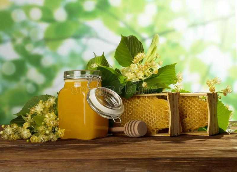 May honey in jar, wax honeycomb in frame and fragrant flowers on wooden table stock image