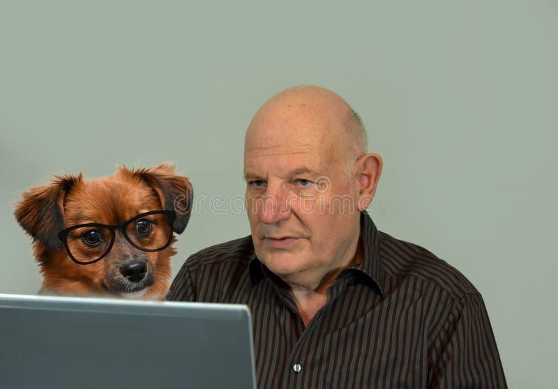 May jag att hjälpa dig? Hund och man som tillsammans arbetar royaltyfri bild