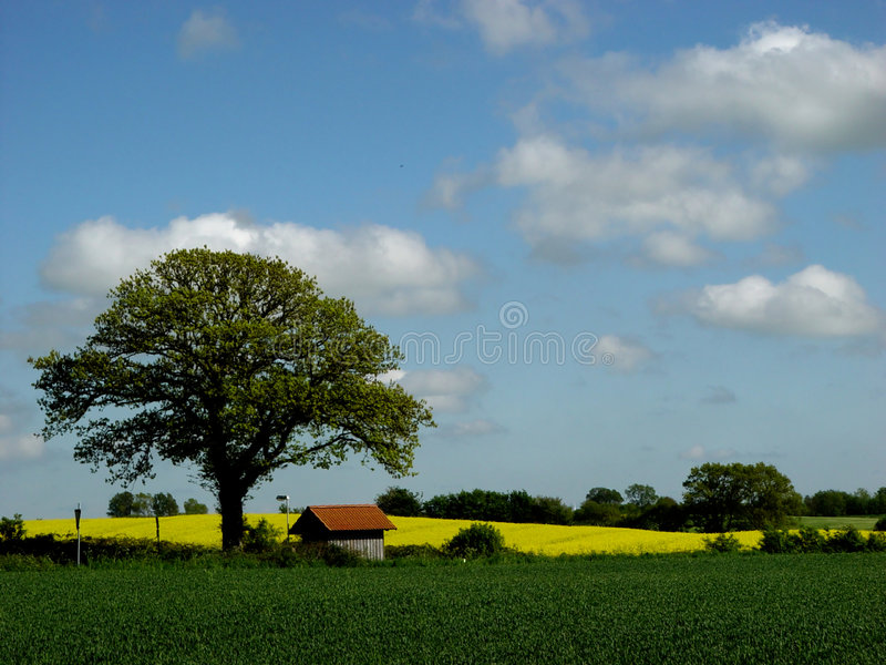 may landscape with busstop royalty free stock image