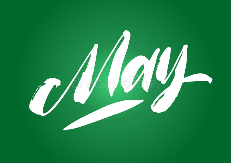May lettering. Calligraphy hand drawn brush pen ink letters. Beautiful and green spring fresh poscard design. On background. stock illustration