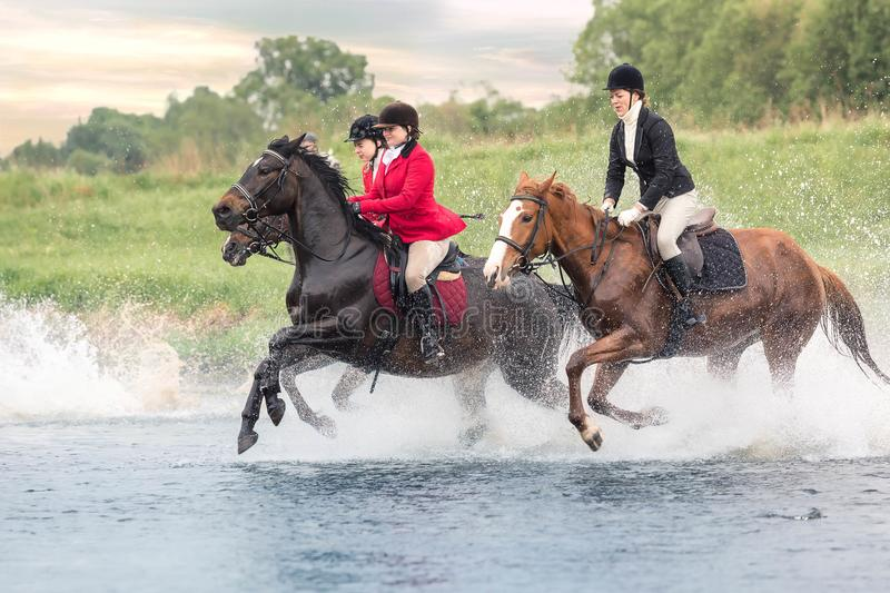 May 20, 2018. Moscow. Three horsewomen force by wading the river astride horses. On a background wood and sunset sky stock photo