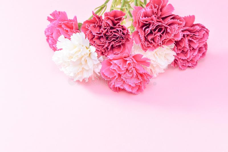 May Mother`s Day Carnation Bunch Of Flowers Bouquet Top View, Blank ...