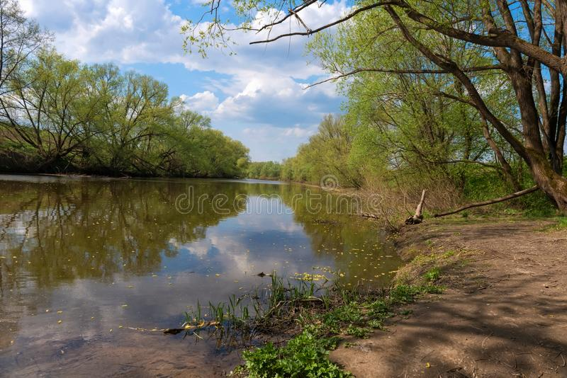 May spring landscape with a river. River Sturgeon. Near the city of Zaraysk in the suburbs stock photo