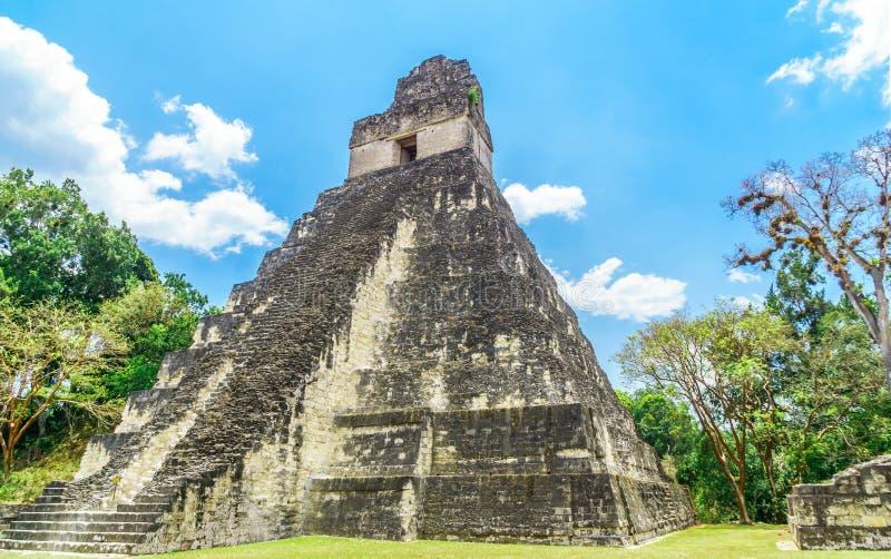 Maya pyramid in national park Tikal in Guatemala stock images