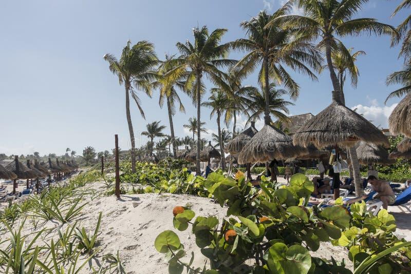 Maya Riviera Beach lizenzfreie stockfotografie