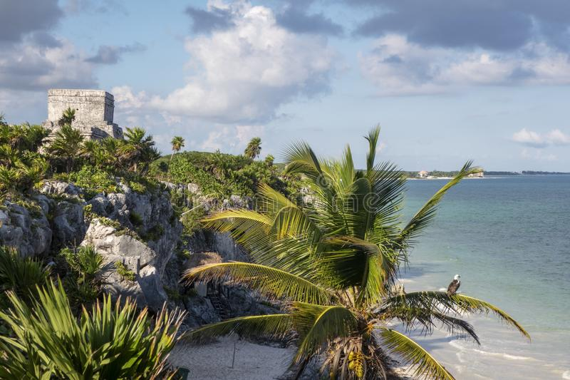 Maya Ruins royaltyfria foton