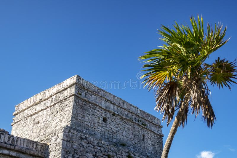 Maya Ruins fotografering för bildbyråer