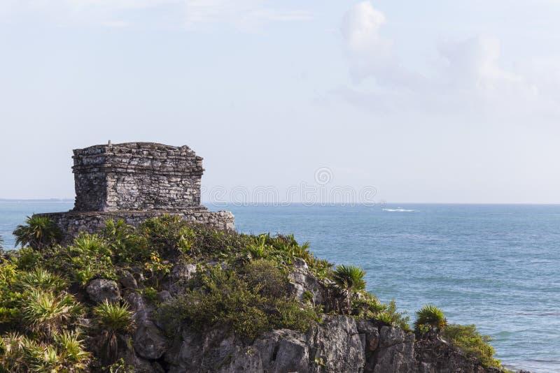 Maya Ruins royaltyfri bild