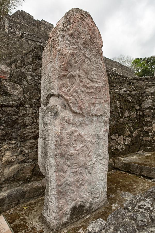 Maya stelae at the Calakmul archeological site in Mexico. Closeup of a maya stelae at the Calakmul archeological site in Mexico stock photography