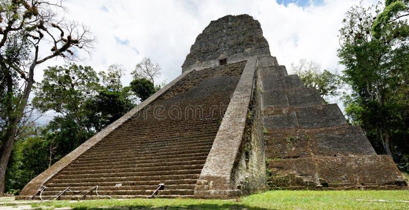 Maya Temple V i Tikal royaltyfria bilder