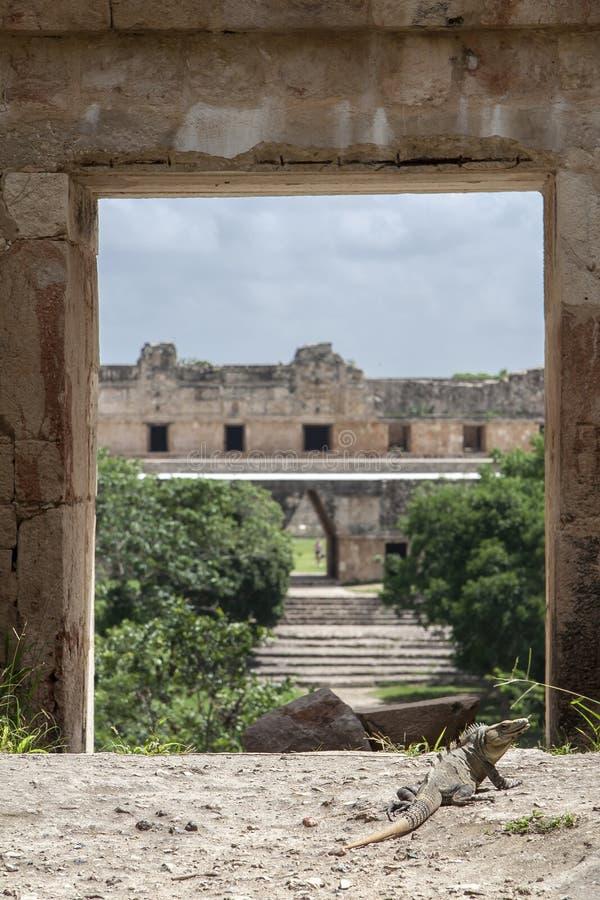 Maya Uxmal πόλη στοκ φωτογραφία με δικαίωμα ελεύθερης χρήσης