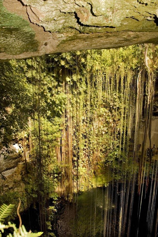 Mayahöhle lizenzfreies stockfoto