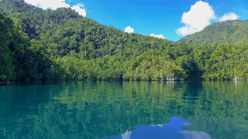 Mayalibit bay in Waigeo. Raja Ampat. View of the Jungle on the Mayalibit bay in Waigeo. Raja Ampat, West Papua, Indonesia stock images