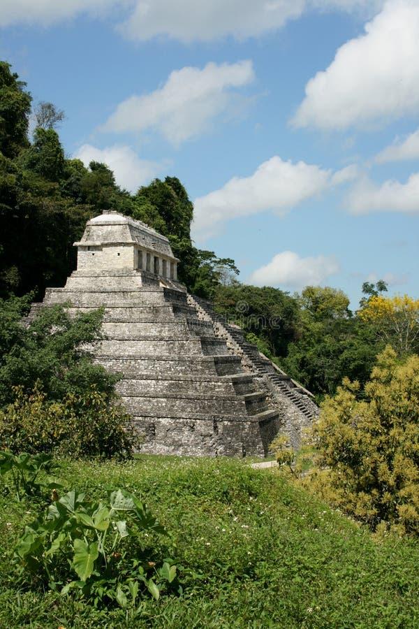 mayamexico palenque fördärvar royaltyfri fotografi