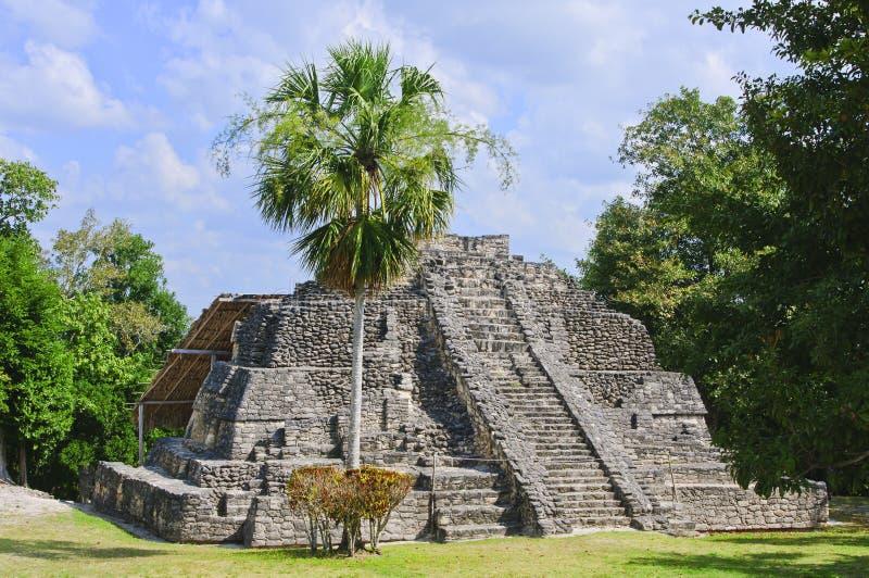 mayamexico tempel royaltyfria bilder