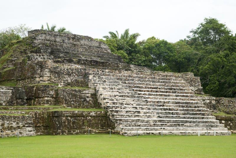 Mayan Altun Ha Ruins stock photos