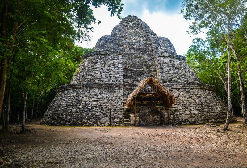 Mayan ancient pyramid royalty free stock photography