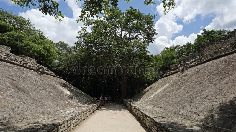Mayan ballcourt, Coba, Mexico royalty-vrije stock foto's