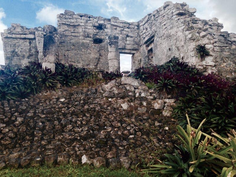 Mayan Bloemen royalty-vrije stock afbeelding