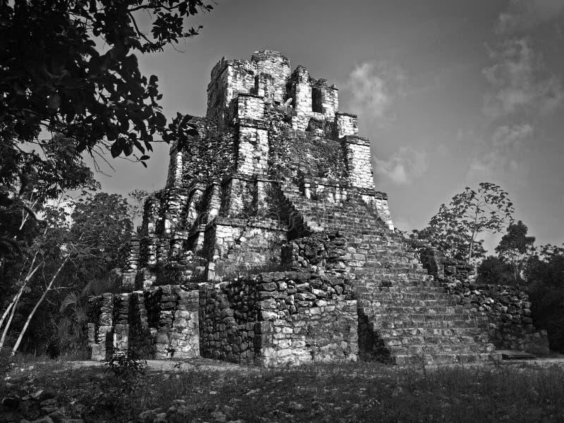 mayan castillo royaltyfria bilder