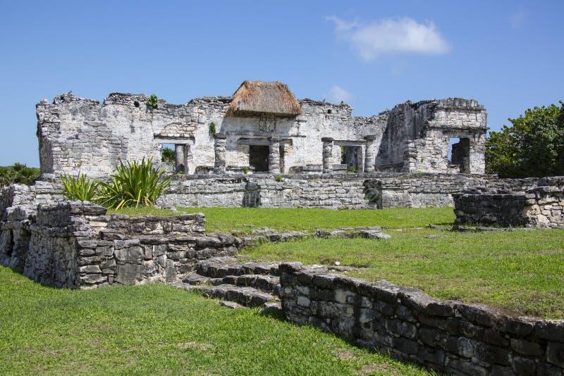 Mayan fördärvar arkitektur - Tulum Cozumel royaltyfri fotografi