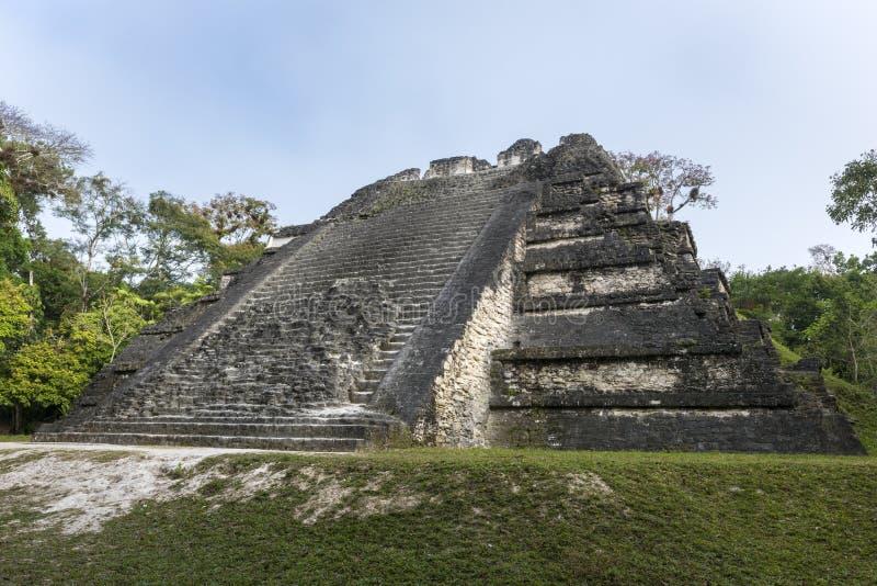 Mayan fördärvar av Tikal i Guatemala arkivbild