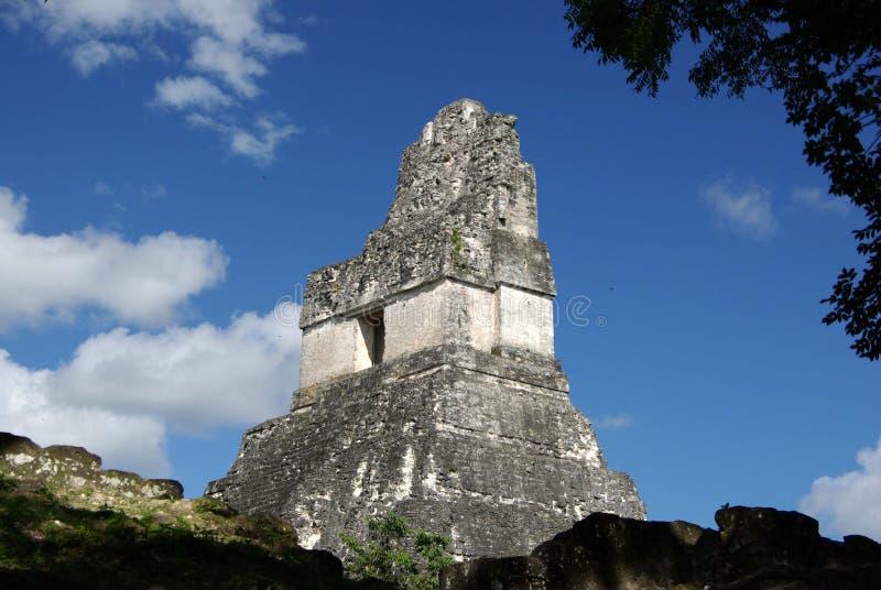Mayan fördärvar i Guatemala royaltyfria foton