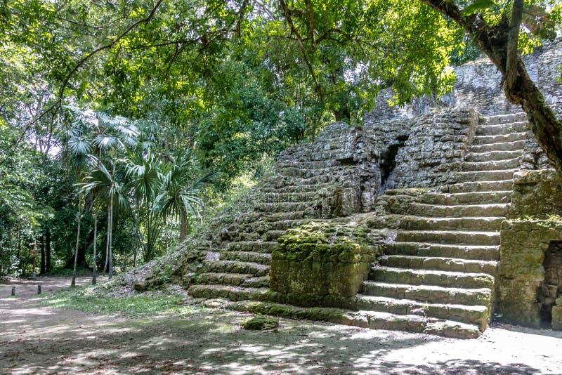 Mayan fördärvar på den Tikal nationalparken - Guatemala arkivbild