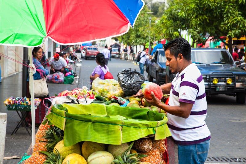 Mayan försäljning en guatemalan bär frukt på gatan av Guatemala City royaltyfri foto