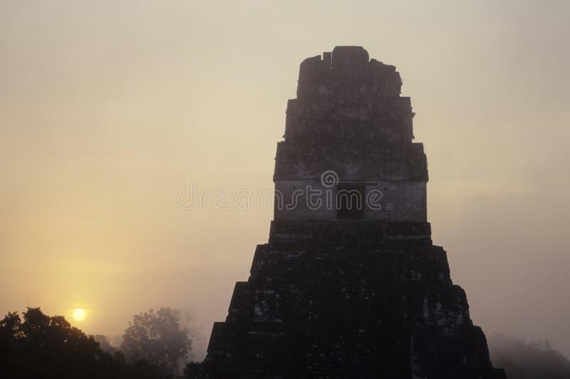 mayan guatemala fördärvar tikal royaltyfria foton