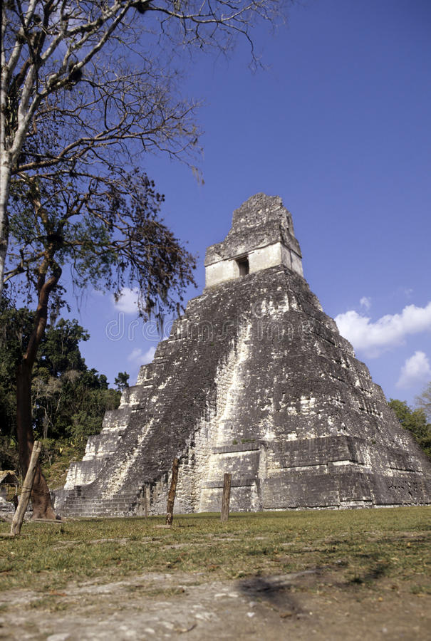 mayan guatemala fördärvar tikal arkivfoto