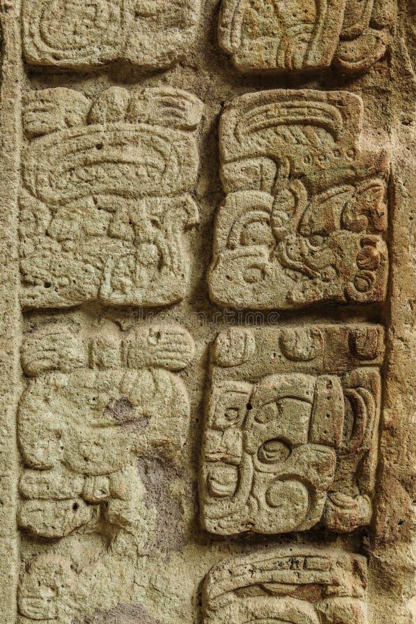 Mayan hiërogliefen, Copan, Honduras stock fotografie