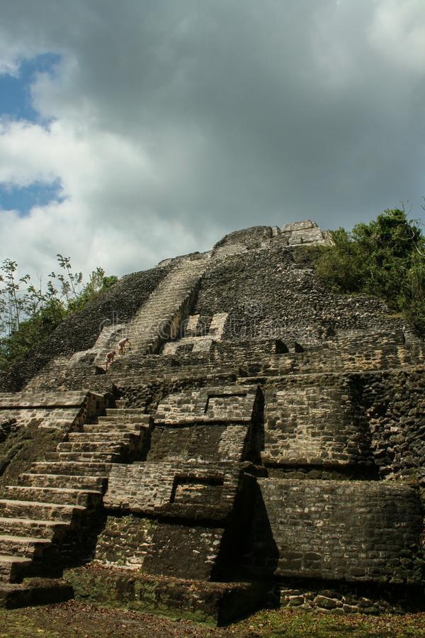 Mayan High Temple in Belize royalty free stock photo