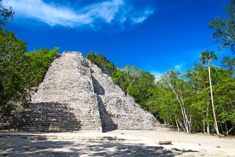 Mayan Nohoch Mul pyramid in Coba royalty free stock image