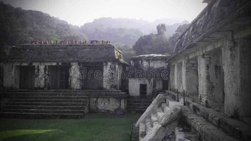Mayan Palenque f?rd?rvar royaltyfri foto