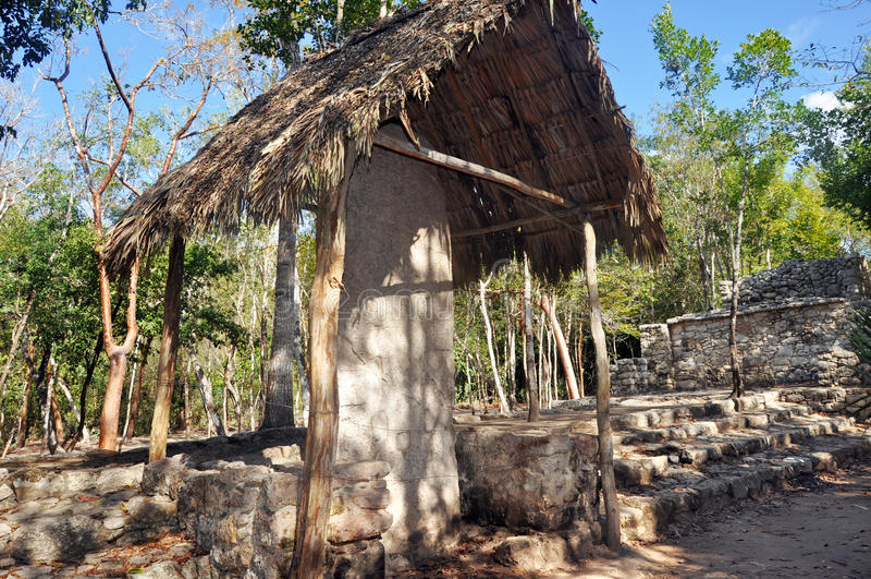Mayan pyramid, Coba, Mexico stock images