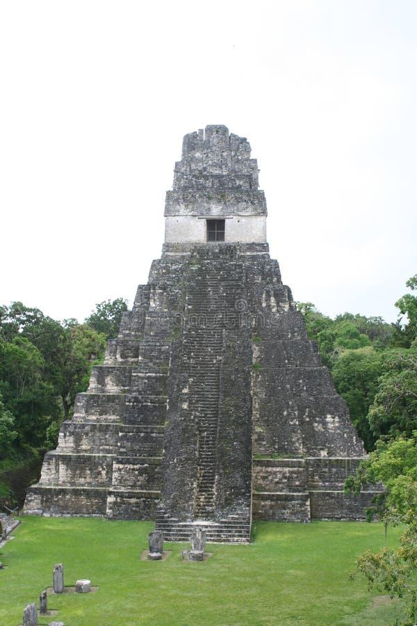 Mayan pyramid i Tikal Guatemala fotografering för bildbyråer