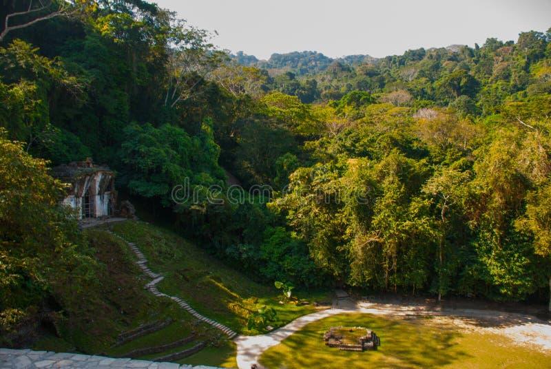 Mayan ruïnes door weelderige wildernis over worden genomen die Palenque, Chiapas, Mexico Palenque Chiapas Mexico stock foto's