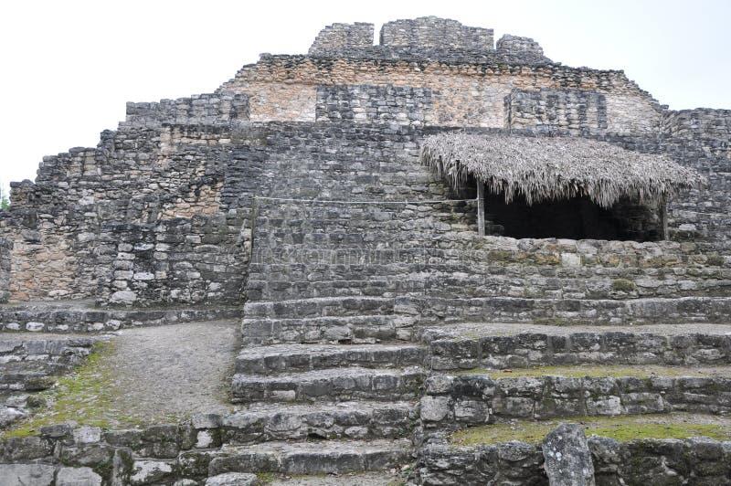 Mayan Ruïnes van Chacchoben royalty-vrije stock afbeelding