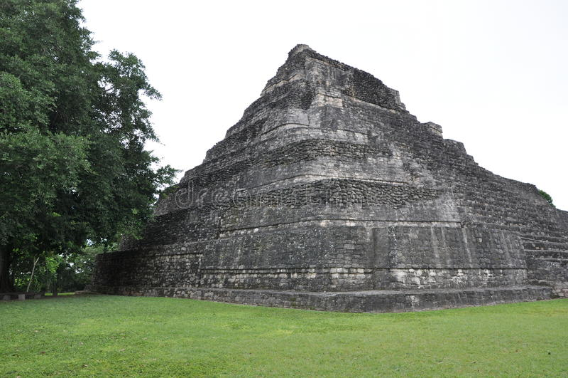 Mayan Ruïnes van Chacchoben stock afbeeldingen