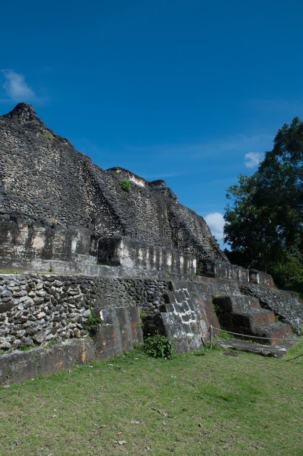 Download Mayan Ruin Royalty Free Stock Photo - Image: 25525785
