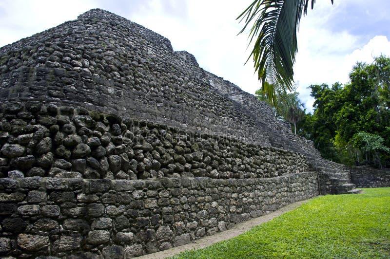Mayan ruins royalty free stock photo