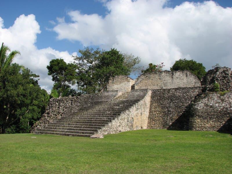 Mayan ruins_Kohunlichtrap stock fotografie