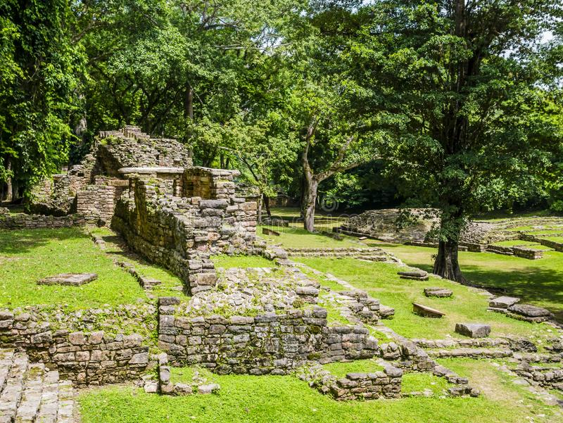 Mayan ruins in Yaxchilan archaeological park, Chiapas, Mexico stock image