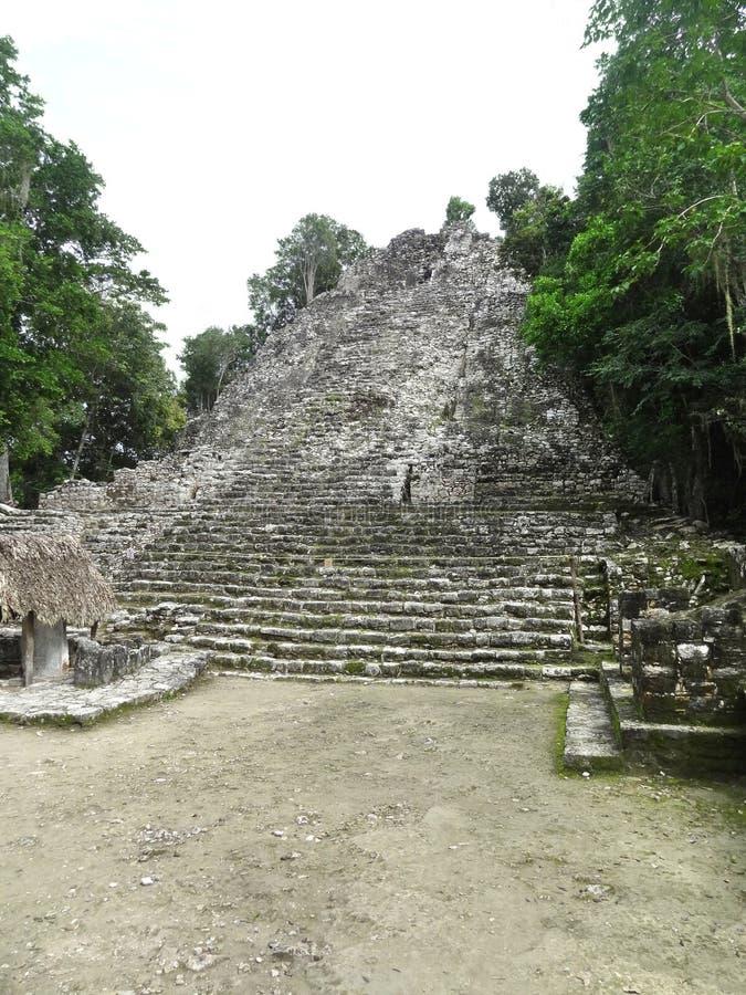 Download Mayan tempel stock afbeelding. Afbeelding bestaande uit piramide - 39109043