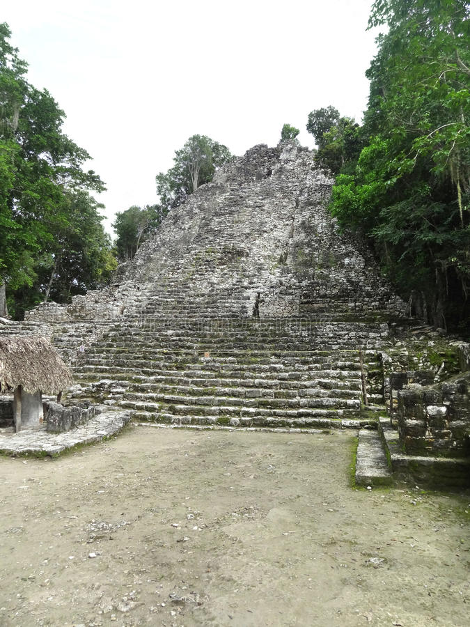 Mayan temple. Ruins of a mayan temple in Coba, Mexico stock photos